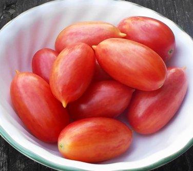 Artisan MAGLIA ROSA Tomato ( Solanum  ) - 15 seeds  ~gemsandstems.info~