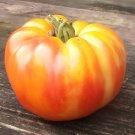 VIRGINIA SWEET Tomato ( Solanum lycopersicum ) - 15 seeds  ~gemsandstems.info~