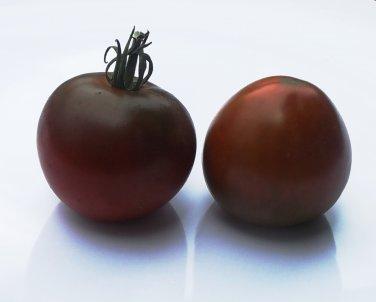 Heirloom BLACK PRINCE Tomato ( Solanum ) - 15 seeds  ~gemsandstems.info~