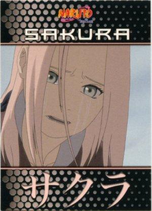 Naruto Ninja Ranks 14