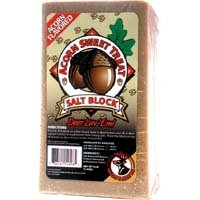 Sweet Acorn Block (Pack of 6)