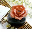 Rosh aromatherapy vase
