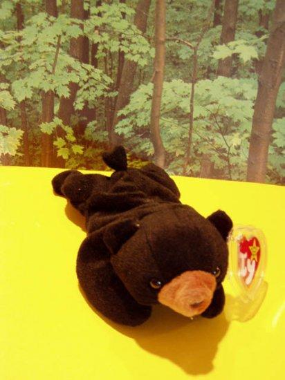 Blackie The bear