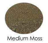 Medium Moss Matte Shadow Sample Baggie