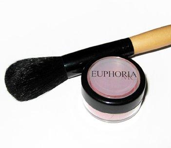 1 Blush and Blush brush Set 5% Off