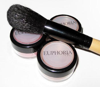 3 Blushes and 1 Blush brush Set 10% Off