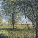 Willows in a Field - Afternoon - A3 Poster