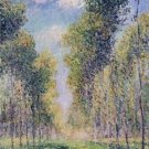 Alley of Poplars, 1900 - 24x18 IN Poster