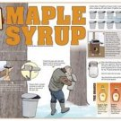 Vinteja charts of - Maple Syrup - A3 Paper Print