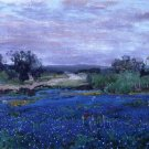 Blue Bonnets at Twilight, 1922 - 24x32 IN Canvas