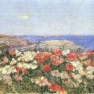 Poppies on the Isles of Shoals by Hassam - 24x32 IN Canvas
