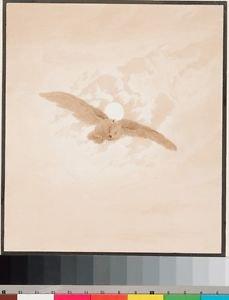 Friedrich Caspar David - Owl Flying against a Moonlit Sky - 30x40IN Paper Print