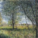 Willows in a Field - Afternoon - 24x18 IN Canvas