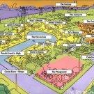 Vinteja charts of - The Ed's Neighborhood - A3 Paper Print