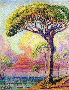 A Pine Tree, 1905 - 24x18 IN Poster
