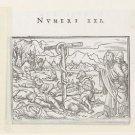 Establishment of the Brazen Serpent. 1538 - A3 Poster