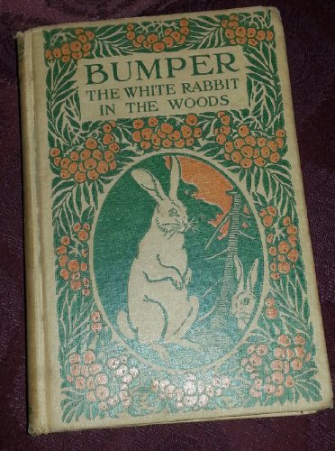 1922 Collectable Bumper the White Rabbit in the Woods BY George Walsh Vintage-HC