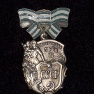 Order of Maternal Glory III degree #101012