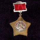 Order of Suvorov II degree. suspension #101023