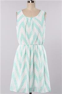 Womens Small Dress NWT Small Mint Chevron Dress Lined USA ~