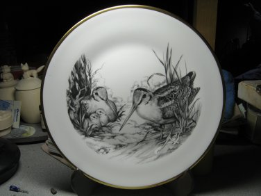 """Woodcock"" by Boehm"