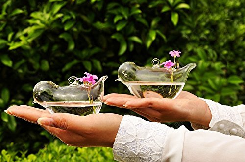 Set of 2 Different Size Beautiful Hand Blown Glass Bird Shape Hanging Planters or Vases