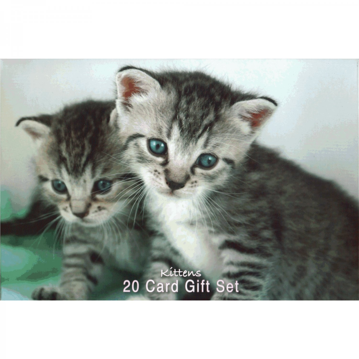 Very Cute Kittens with Big Blue Eyes - Notecards and Envelopes Set of 20