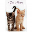 Cute Kittens - Attractive Set of 20 Notecards and Envelopes