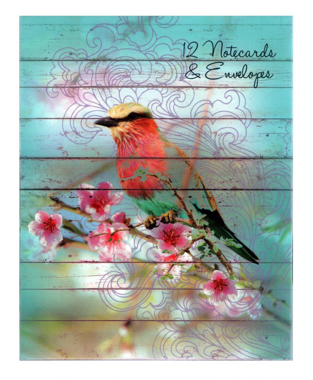Dawn Chorus Set of 12 Bird Illustration Notecards and Envelopes