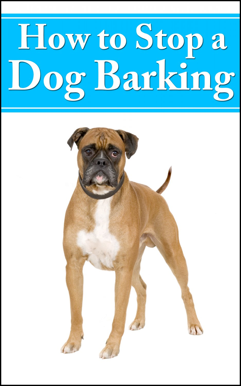 HOW TO STOP DOG BARKING - Methods to Stop Your Dog�s Excessive Barking - eBook