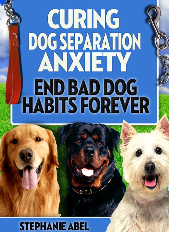 Curing Dog Separation Anxiety - MP3 Audio Book & Ebook