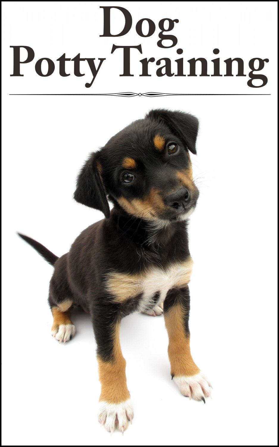 DOG POTTY TRAINING - Teaching Your Pup The Right Ways - eBook