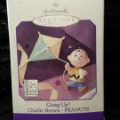 1998 CHARLIE BROWN PEANUTS Flying A Kite titled Going up?  Hallmark Keepsake Christmas Ornament NIB