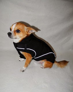 "On Sale: (XS) Warm Dog Winter Jacket w/ Fleece Lining, 10"", Brown"