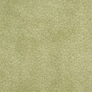 "54"""" B360 Light Green, Abstract Curls Microfiber Upholstery Fabric By The Yard"