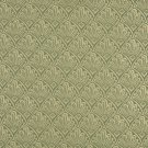 """A120 Light Green Two Toned Fan Upholstery Fabric By The Yard 