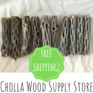 "10 Pieces 4"" Cholla Wood - Dried Cholla Cactus Aquarium Decor"