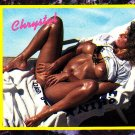 Chrystal #113 Hustler 1993 Adult Sexy Trading Card
