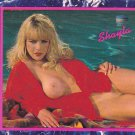 Shayla #241 Hustler 1994 Adult Sexy Trading card, FREE SHIPPING