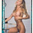 Tamara Taylor #27 Dollhouse 1993 Adult Sexy Trading Card, FREE SHIPPING