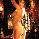 Amber Campisi #5 Playboy 2009 Adult Sexy Trading Card
