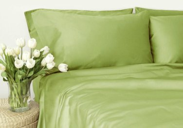 500TC SAGE SOLID QUEEN SHEET SET � 100% EGYPTIAN COTTON