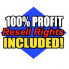 Xbox, Playstation 2, and Gamecube Cheats and Secrets + Resale Rights