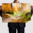 Autumn Light Over The Forest Poster 36x24 inch