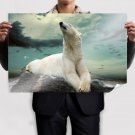 Polar Bear Dreaming Poster 36x24 inch