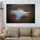 Boeing Phantom Works Nasa Blended Wing Body X 48b Aircraft  Art Poster Print  36x24 inch