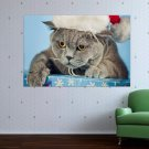 Angry Christmas Cat  Art Poster Print  36x24 inch