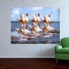 Water Ski  Art Poster Print  32x24 inch