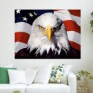 The American Eagle  Art Poster Print  24x18 inch