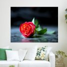 Red Rose Desktop  Art Poster Print  24x18 inch